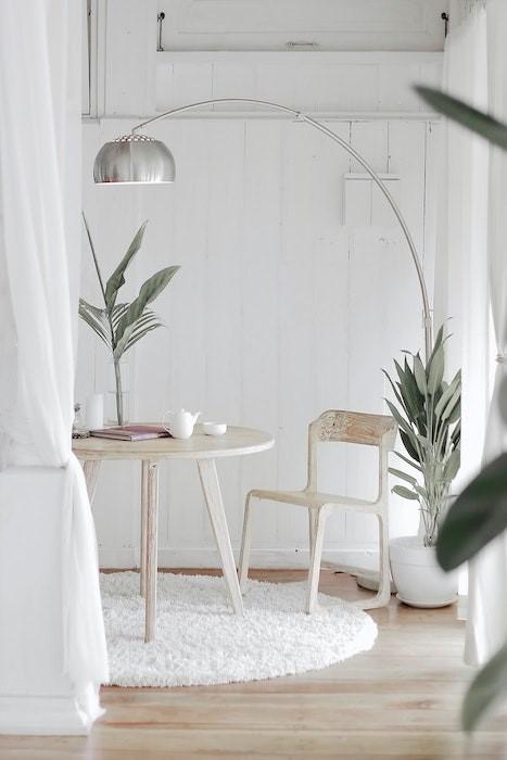 aire de calidad hogar con plantas